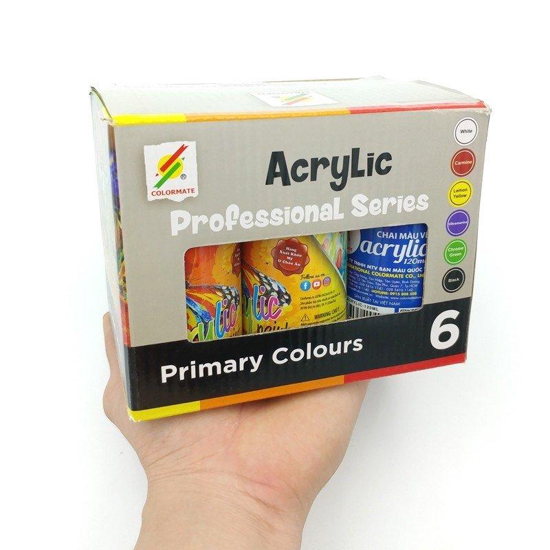6 Chai Màu Vẽ Acrylic 120Ml