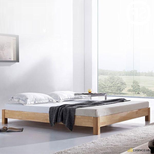 Giường ngủ đơn giá rẻ dưới 1 triệu - Mẫu 7
