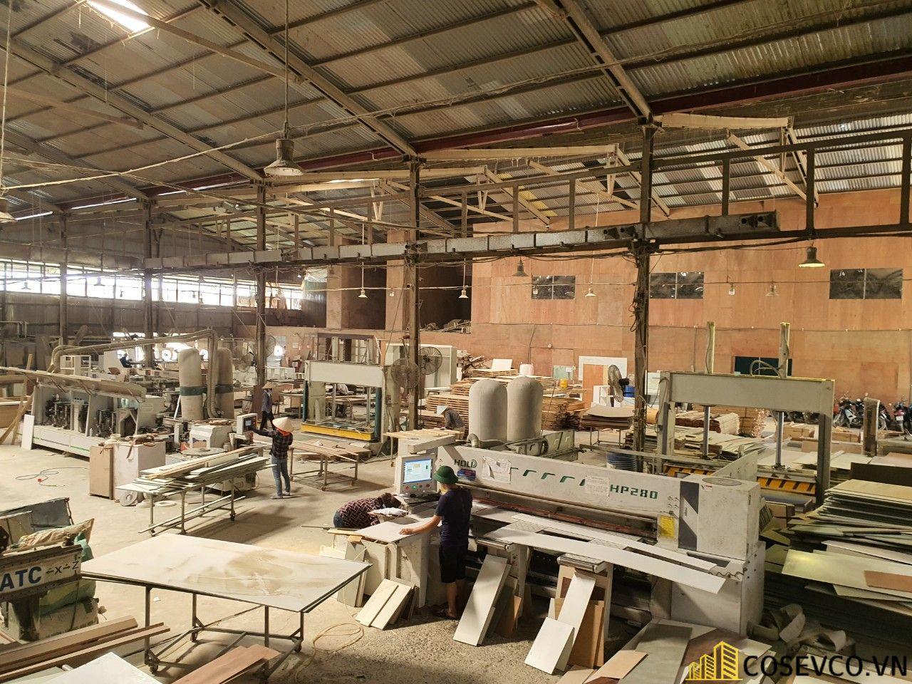 Xưởng sản xuất nội thất công ty Cosevco - View 1